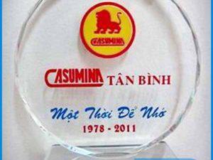 kỷ niệm chương THỦY TINH